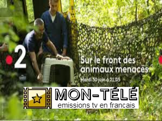 Sur Le Front - France 2 replay